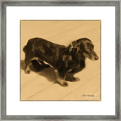 Dolled Up Dachshund 2 Framed Print by Susan  Lipschutz