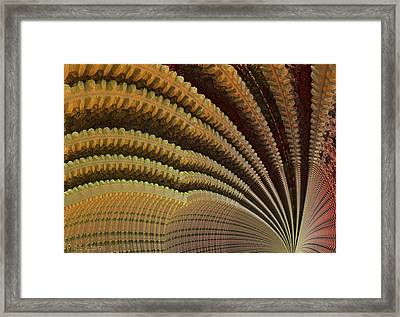 Dolomitic Fern.  Framed Print by Tautvydas Davainis
