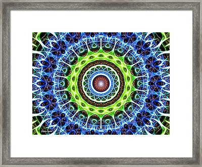 Dome Framed Print by Stephen Younts