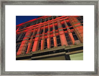 Dominance Framed Print by