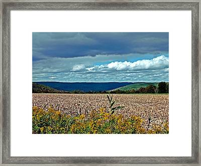 Framed Print featuring the photograph Done For Another Season by Christian Mattison