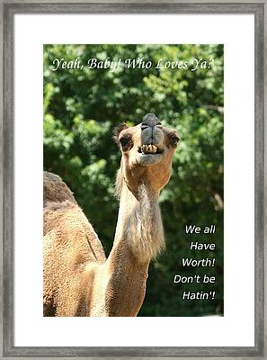 Dont Be Hatin Framed Print by David Dunham