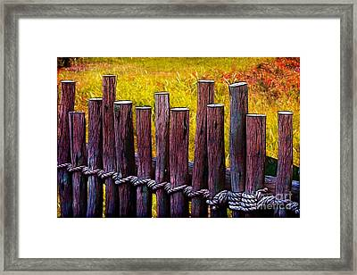 Don't Fence Me In Framed Print by Judi Bagwell