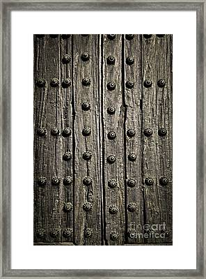 Door Detail Framed Print by Elena Elisseeva