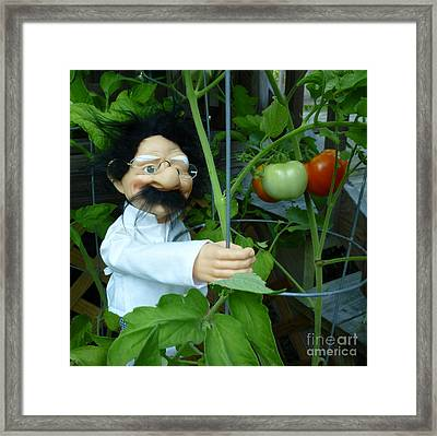 Framed Print featuring the photograph Dorf Chef Doll With Tomatoes by Renee Trenholm