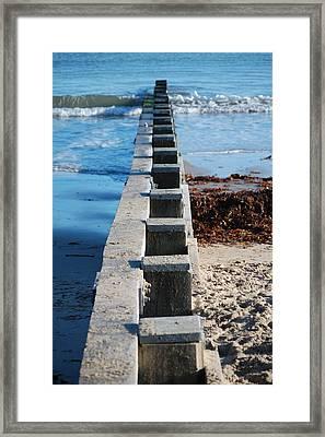 Dorset Groyne Framed Print by Dickon Thompson