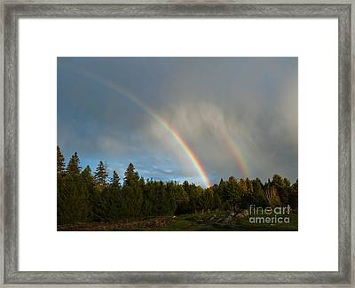 Double Blessing Framed Print by Cheryl Baxter