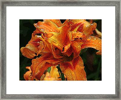 Framed Print featuring the photograph Double Lily by Michael Friedman