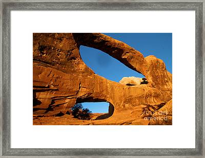 Double O Glow Framed Print by Adam Jewell