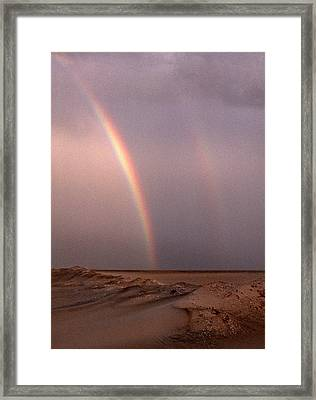Double Framed Print by Skip Willits