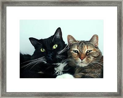 Double Trouble 1 Framed Print