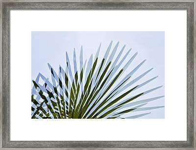 Framed Print featuring the photograph Double Vision by Sherri Meyer