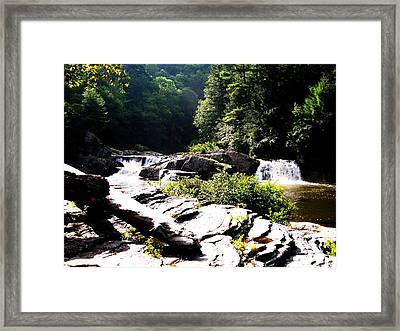 Double Waterfalls Framed Print by Carrie Munoz