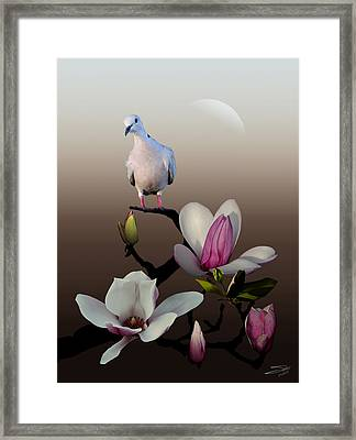 Dove And Magnolia Framed Print