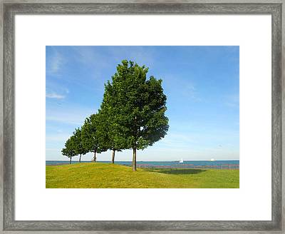 Down By The Lake Framed Print by Sarah Vandenbusch