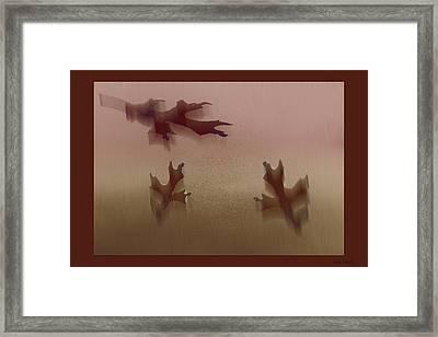 Down Drift Framed Print by Debra     Vatalaro