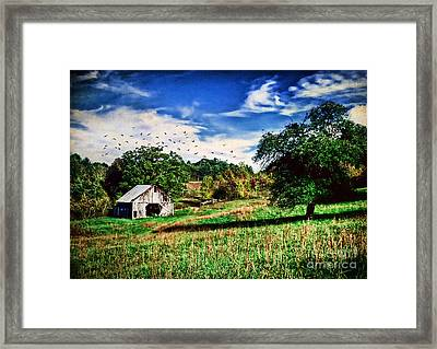 Down On The Farm Framed Print by Darren Fisher