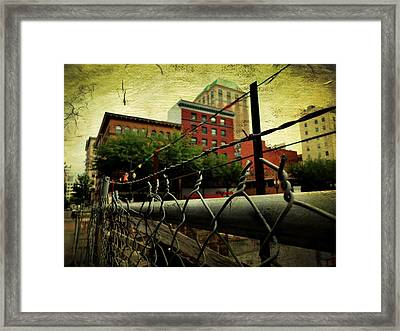 Down The Fence Framed Print by Cathie Tyler