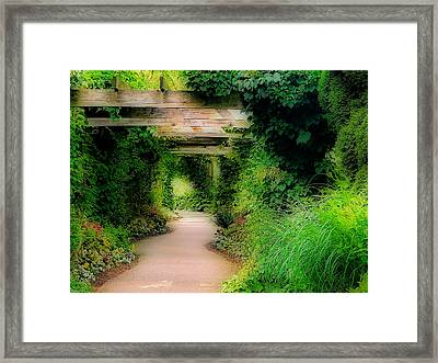 Down The Garden Path Framed Print by Blair Wainman