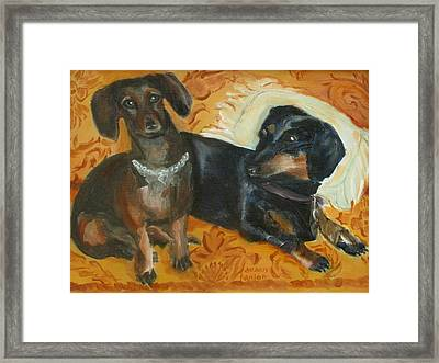 Doxie Duo Framed Print by Susan Hanlon