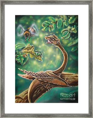 Dragon Framed Print by Daniel Stimpel