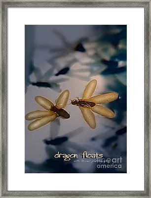 Framed Print featuring the photograph Dragon Floats by Vicki Ferrari