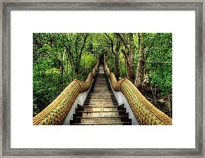 Dragon Steps Framed Print by Adrian Evans
