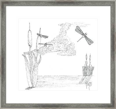 Dragonflies And Cattails - Sketch Framed Print by Robert Meszaros