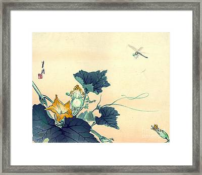 Dragonfly And Squash Blossoms 1890 Framed Print