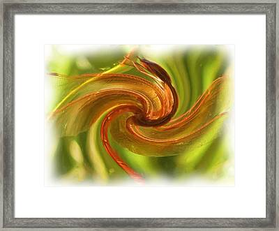 Dragonfly In A Blender Framed Print by Feva  Fotos