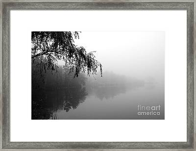 Framed Print featuring the photograph Dream by Adrian LaRoque