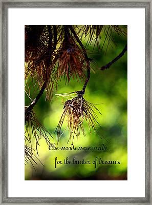 Dream Hunter In The Woods Framed Print by Toni Hopper