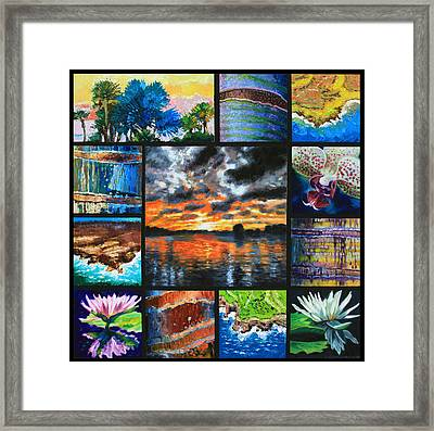 Dreaming Of A Tropical Paradise Framed Print by John Lautermilch