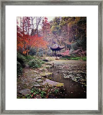 Dreaming Of Tiger Spring (hangzhou, China) Framed Print by Andy Brandl