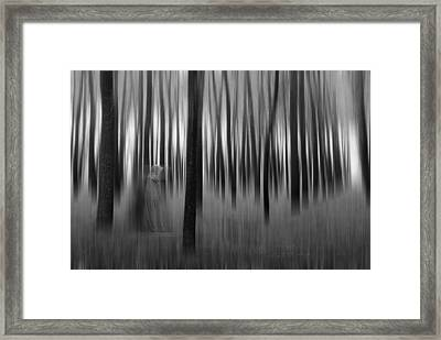 Dreams-2 Framed Print