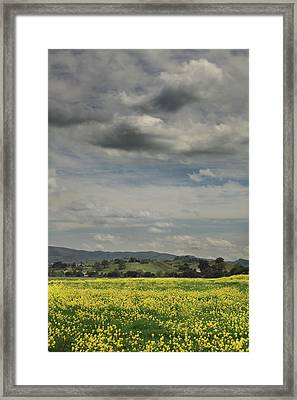 Dreams Are Hard To Follow Framed Print