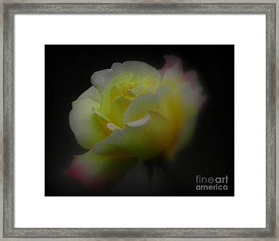 Dreams Are Made Of These Framed Print by Carol  Hynes