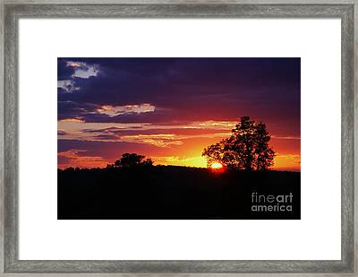 Framed Print featuring the photograph Dreams Golden Lining by Julie Clements
