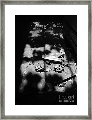 Dreams Of Flight Framed Print