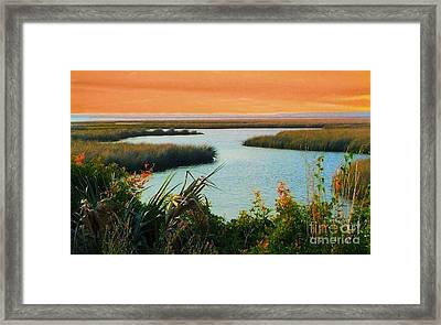 Dreamsicle Sunset Framed Print by Julie Dant