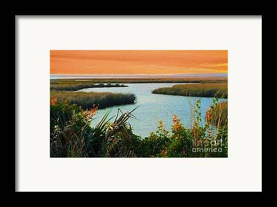 St. Marks State Park Framed Prints