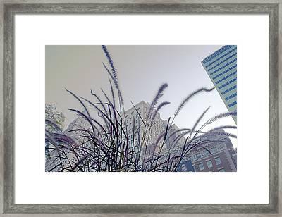 Dreamy City Framed Print