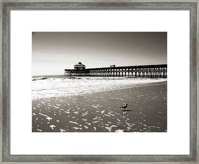 Dreamy Coast Framed Print by Zarija Pavikevik