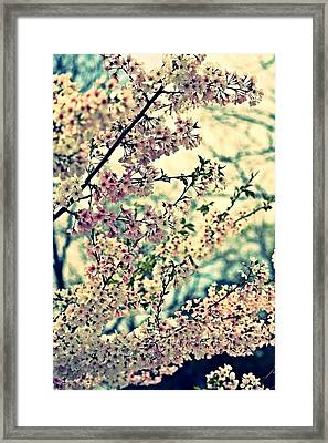 Dreamy Explosion Framed Print by KayeCee Spain