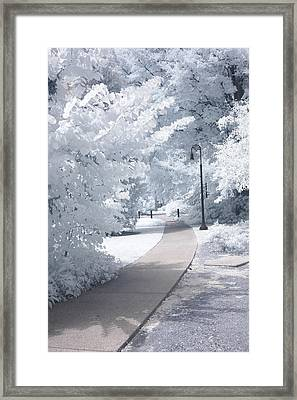 Dreamy Infrared Michigan Park Nature Landscape Framed Print by Kathy Fornal