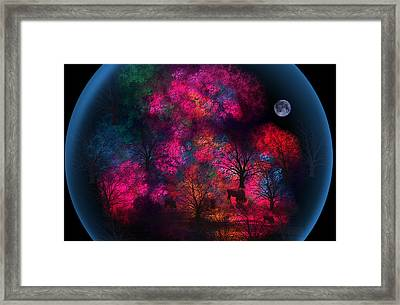 Dreamy Little Forest Framed Print