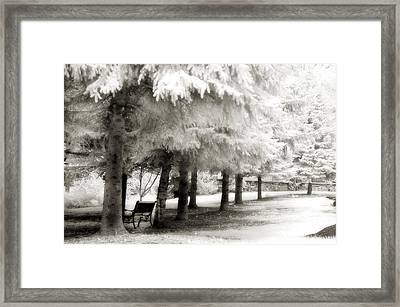 Dreamy Surreal Infrared Park Bench Landscape Framed Print by Kathy Fornal