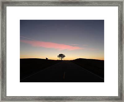 Dreamy Tree Road Framed Print by Brian  Maloney