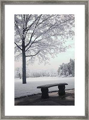 Dreamy White Blue Infrared Michigan Landscape Framed Print by Kathy Fornal