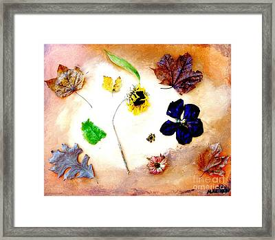 Dried Flowers And Leaves Framed Print by Marsha Heiken